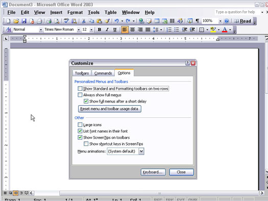 The Customize dialog box in Word 2003.
