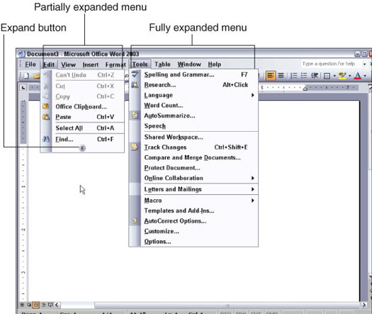 Multiple expanded menus on Word 2003.