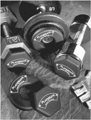 PlateMates are interim weights that you can add to dumbbells or barbells. [Credit: Photograph by Su