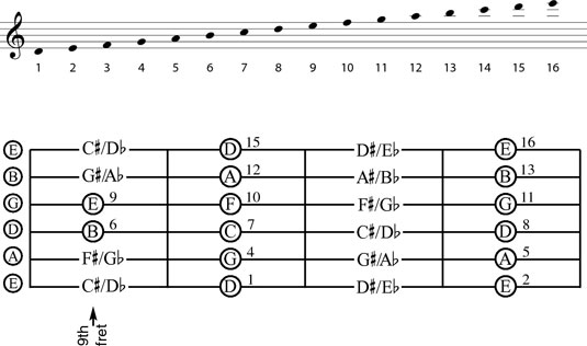The notes of the ninth through the twelfth frets.