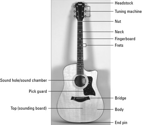 The Anatomy Of An Acoustic Guitar Dummies