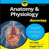 anatomy&physiology-featured