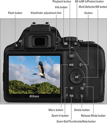 Nikon D3500 For Dummies Cheat Sheet - dummies