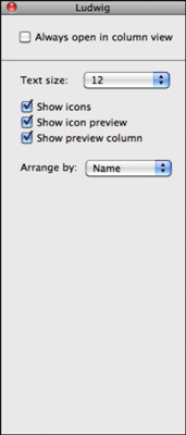 You can customize Snow Leopard's glamorous column view settings.