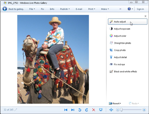 Windows Live Photo Gallery offers its photo-fixing tools along its right side.