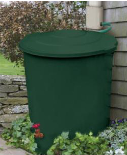 A typical rain barrel, available at most garden centers.