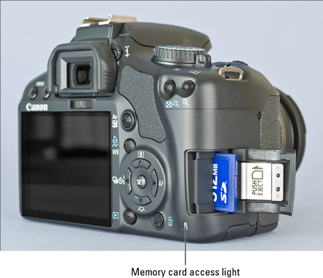 The Memory Card for a Canon EOS Digital Rebel XSi/450D - dummies