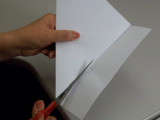 Cut off the extra flap of paper to make a paper square.