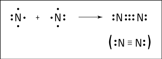 Triple bond formation of nitrogen.