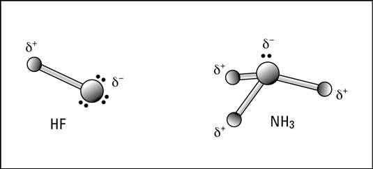 Polar covalent bonding in hydrogen fluoride and ammonia.