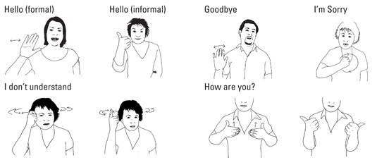 British sign language for dummies cheat sheet dummies image0g m4hsunfo