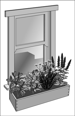 Plant herbs in a window box that gets plenty of sun.