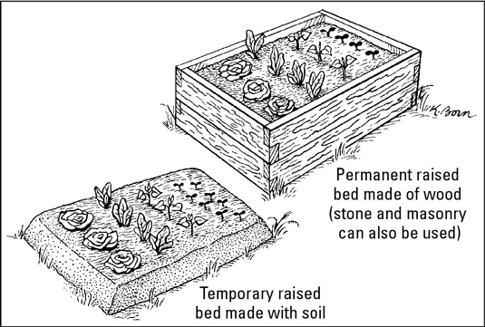 Make raised beds with soil, or wood, stone, or masonry sides.