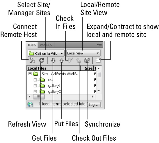 The elements of the Dreamweaver CS5 Files Panel.