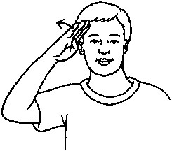 How to start a conversation in american sign language dummies image0g m4hsunfo