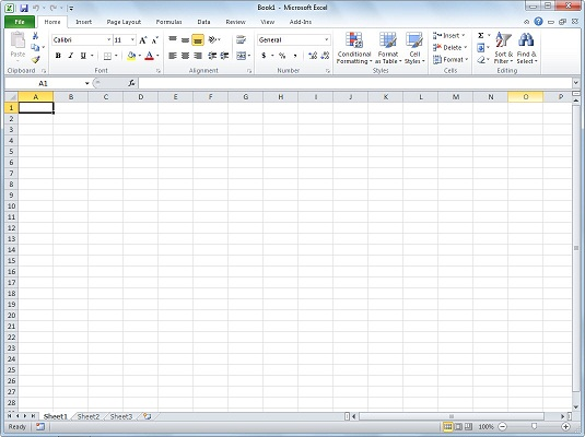 Excel 2010 displays a new, blank workbook when you start the program.