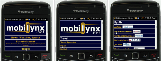 Preview of a website on a BlackBerry phone.