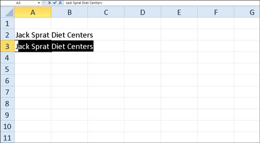AutoComplete duplicates a previous entry if you start a new entry in the same column that begins wi