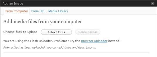 The Add an Image window lets you choose images from your hard drive or from a location on the Web.