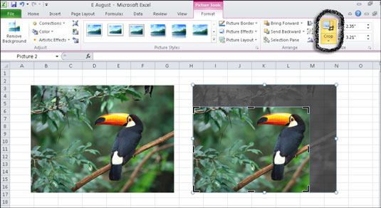 You can crop an image to remove undesired areas of a picture.