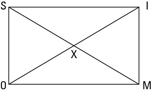 image12.jpg