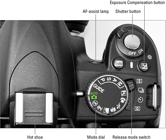 Top view of a Nikon D3100 camera with every button explained.