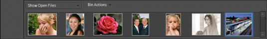 All open pictures and new views are displayed as thumbnails in the Project Bin.
