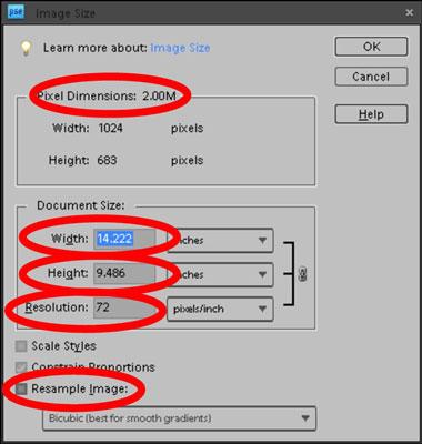 Choose Image-->Resize-->Image Size to open the Image Size dialog box.