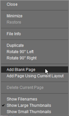 Right-click and then choose an option for adding a page to the photo selected in the Project Bin.