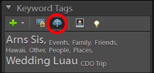 Click the View Keyword Tag Cloud icon to display a hierarchical list of tag categories.