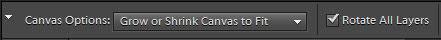 Straighten tool settings on the Options bar.