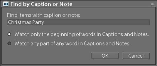 Choose Find-->By Caption or Note to open the dialog box in which search criteria for captions an