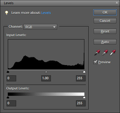 Adjust lighting levels in the Levels dialog box.