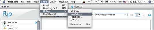 The Share tab on FlipShare allows users to share their videos online on sites like YouTube and Facebook.