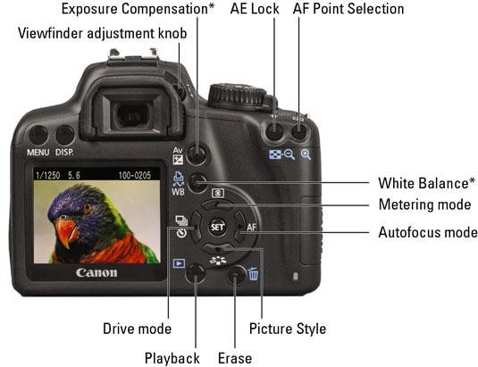 canon eos rebel xs 1000d for dummies cheat sheet dummies rh dummies com Canon Rebel 1000D canon 1000d manual mode