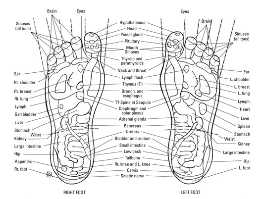 238023.image0 foot reflexology map dummies