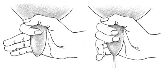 Wrap your thumb and forefinger around the teat to trap the milk and then gently squeeze it out.