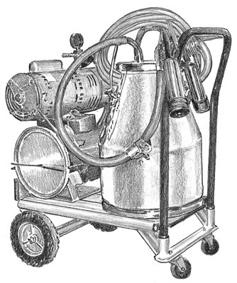 A bucket milking machine works well if you don't have a large number of goats to milk.