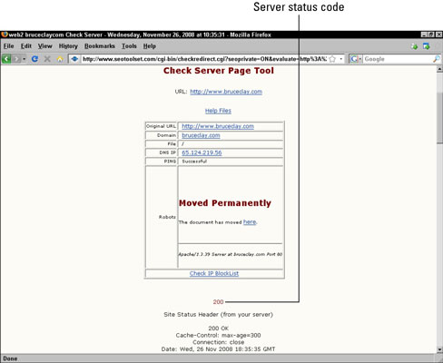 The Check Server report identifies the server status code for a Web page.