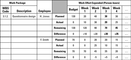 A typical labor report describes the work effort by each team member on each work package.