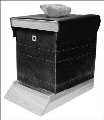 Wrapping your hive in tar paper helps protect your colony from harsh winter winds and absorb the wa