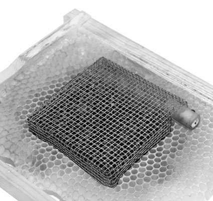 "A ""push-in"" queen cage helps you confine a queen to just a few cells. The eggs laid in th"