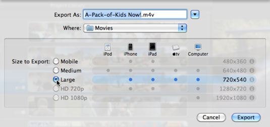Save the video project as a movie file.