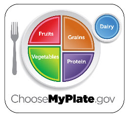 The new food pyramid is now a plate called my plate the usda's.