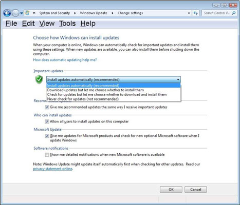 You can choose how Windows updates are downloaded and installed.