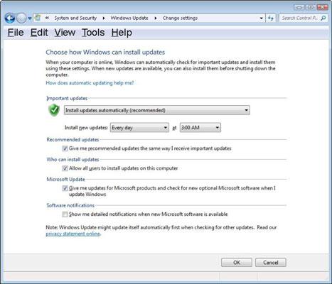 Additional Windows Update settings.