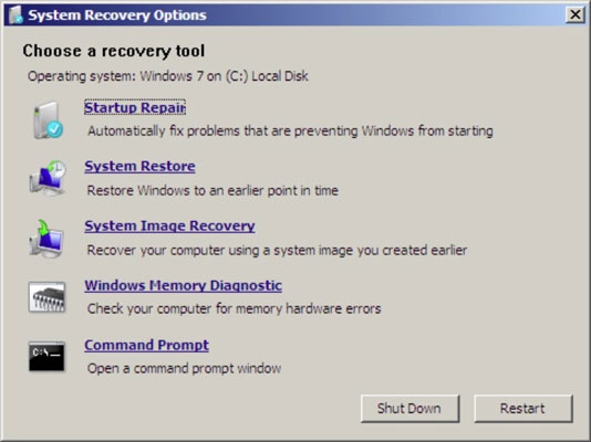 The System Recovery Options dialog box.