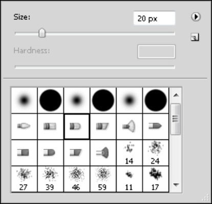 The Brushes Preset picker.