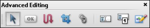 The Advanced Editing toolbar.