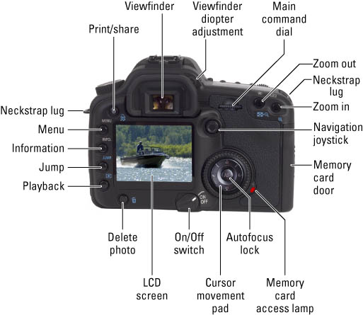Digital Slr Cameras Photography For Dummies Cheat Sheet. Worksheet. The Eye And The Camera Worksheet At Mspartners.co
